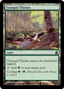 tranquil_thicket.png